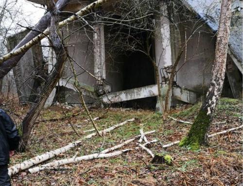 BZRH – HarzSar Rettungshundestaffel besucht BRH-Weserbergland in Leese/Nds